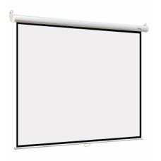 Экран Digis DSOB-4305 (настенно-потолочный, 240x180см) [DSOB-4305]