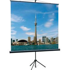 Экран LUMIEN Eco View LEV-100103 (напольный, 111