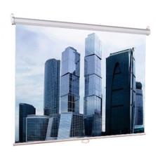 Экран LUMIEN Eco Picture LEP-100102 (настенно-потолочный, 100