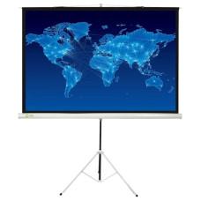 Экран Cactus Triscreen CS-PST-150x150 (напольный, 87