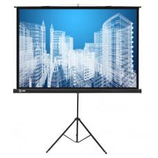 Экран Cactus CS-PST-104X186 (напольный, 84
