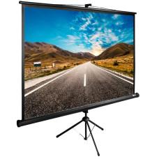 Экран Cactus CS-PSTE-200Х200-BK (напольный, 90