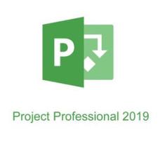 Microsoft Project Professional 2019 [H30-05756]