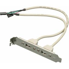 Адаптер ASIA BRACKET USB 2.0 2 PORT(USB) [ASIA BRACKET USB 2.0 2 PORT]